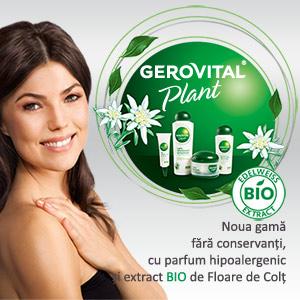 gerovital plant floare de colt