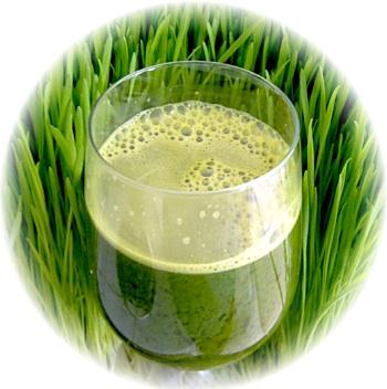 Orzul verde, detoxifiantul numarul 1 al naturii!