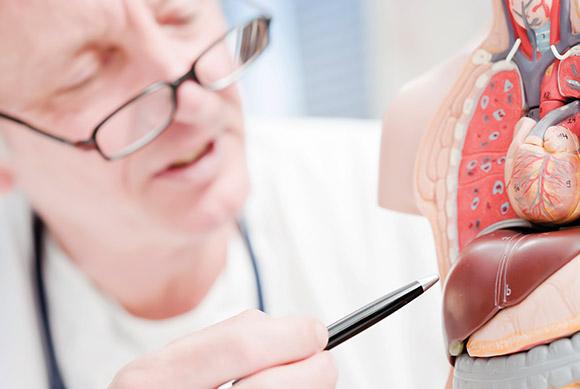 Liv 52 trateaza si previne bolile ficatului in mod natural